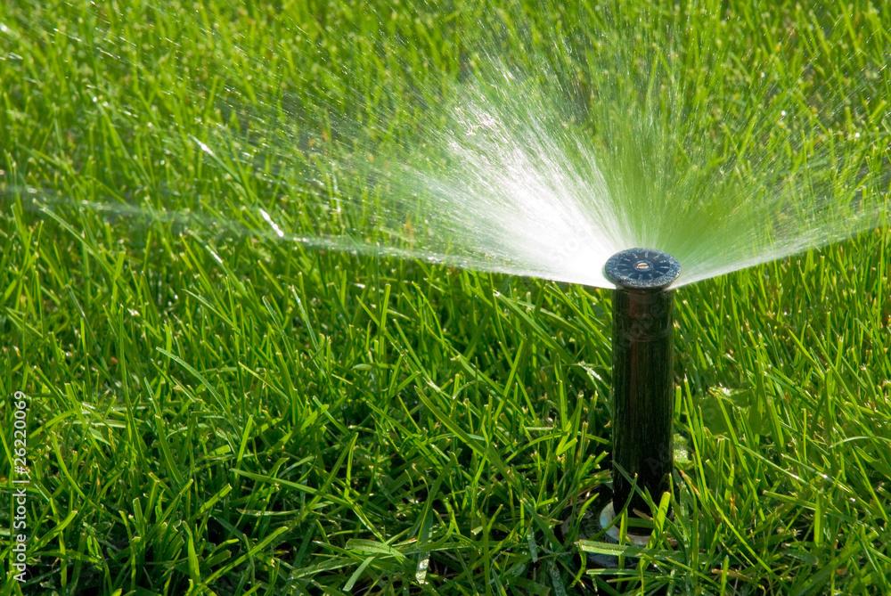 Fototapety, obrazy: sprinkler of automatic watering