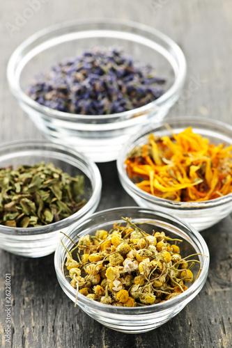 Photo  Dried medicinal herbs
