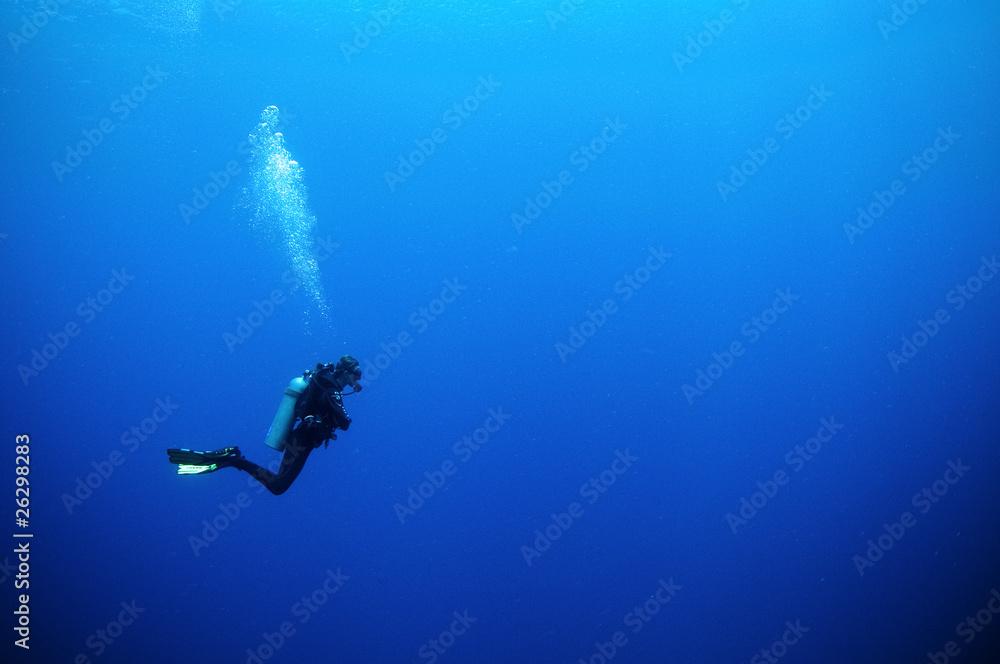 Fototapeta scuba diver in deep blue water