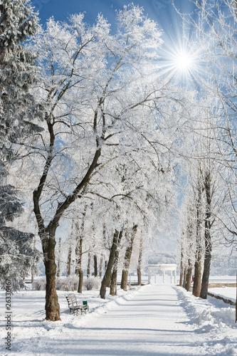 Foto-Schmutzfangmatte - winter (von Leonid Tit)