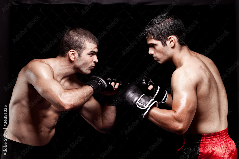 Foto-Stoff bedruckt - Mixed martial artists before a fight
