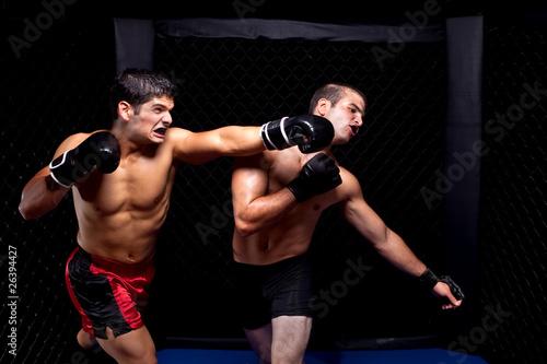 Foto-Rollo - Mixed martial artists fighting - punching (von Nicholas Piccillo)