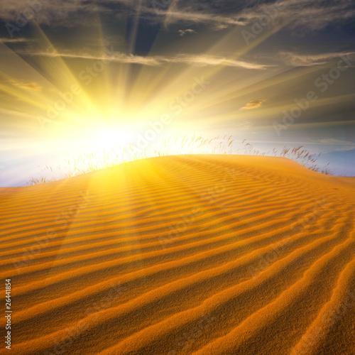 Papiers peints Desert de sable Sand in desert