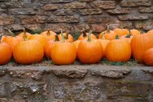 Pumpkins Stone Wall