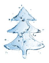 Fir Tree From Water Splash Isolated On White