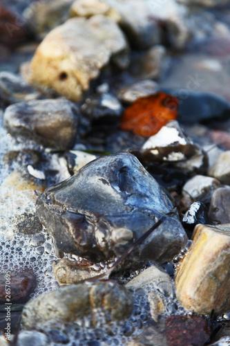 Aluminium Prints Forest river Stones