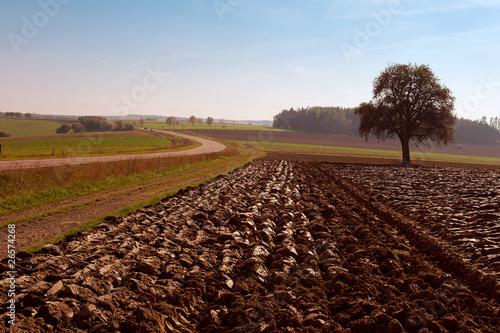 champ agricole fraîchement labouré
