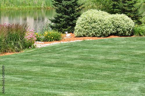 Cadres-photo bureau Olive Backyard Landscaping