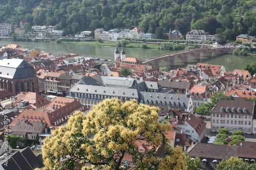 Fototapeta I love Heidelberg obraz