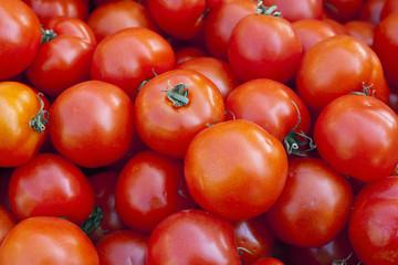 Świeże smaczne pomidory na targu