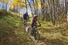 Couple Mountain Biking With Their Dog On Autumn Day