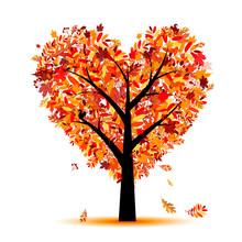 Beautiful Autumn Tree Heart Sh...