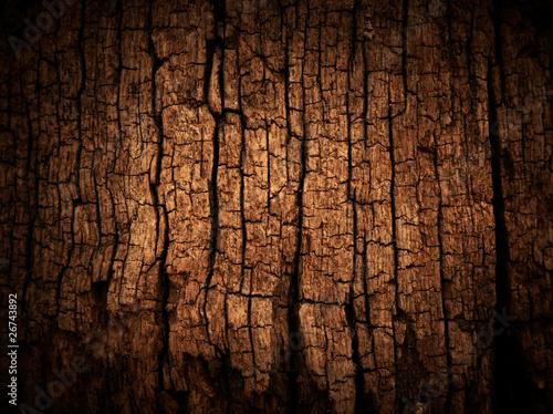 Fotografie, Obraz  Old wood cracked texture