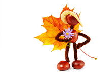 Autumnal Handycraft With Conkers, Leaf And Aster Blossom