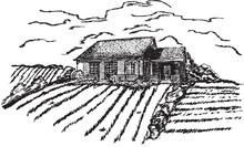Village - Hand Drawing