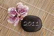 2011, galet et orchidée phalaenopsis