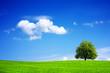 Leinwandbild Motiv Green planet - Earth