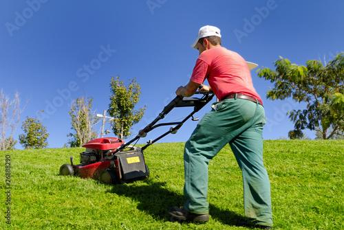 Fotografie, Obraz  Ragazzo che falcia l'erba