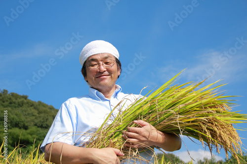Foto  農業 豊作 喜ぶ 稲 抱える 日本人