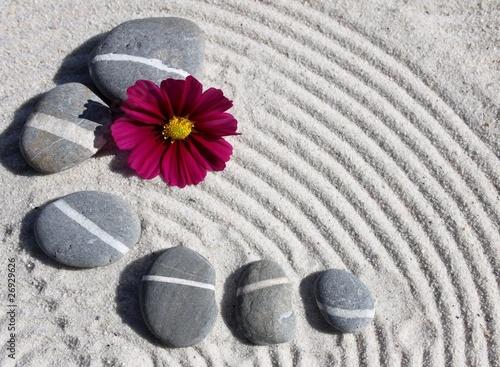 Poster Zen pierres a sable galets et fleur
