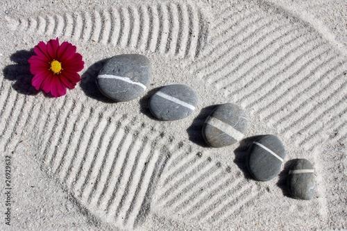 Photo sur Plexiglas Zen pierres a sable galets et fleur