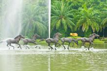 Sculpture Houses On Pool, Assumption University, Thailand