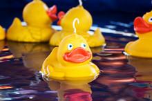 Fairground Ducks