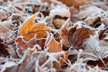 Winteranfang