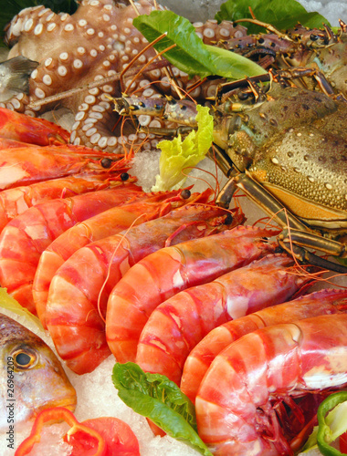 Photo  fresh seafood