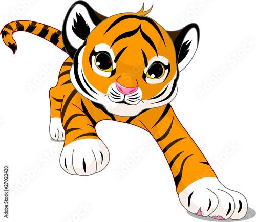 biegnacy-tygrys