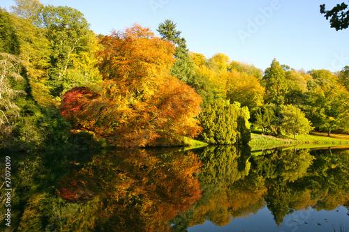Dekoracja na wymiar jesienne-drzewa-i-jezioro