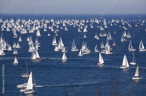 Fotografie, Obraz  La Barcolana a Trieste