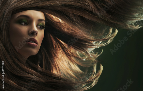 Fotografie, Obraz  Beautiful lady with long brown hair