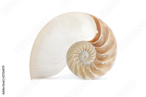 Canvas Print Nautilus shell and famous geometric pattern