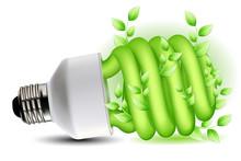 Eco Friendly Cfl Bulb