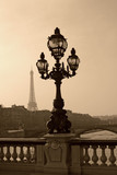 Vintage lamppost on the bridge of Alexandre III (Paris, France)