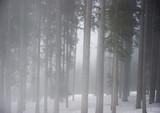 Mroźna zima w Alpach