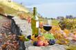 Glass of red wine. Lavaux region, Switzerland