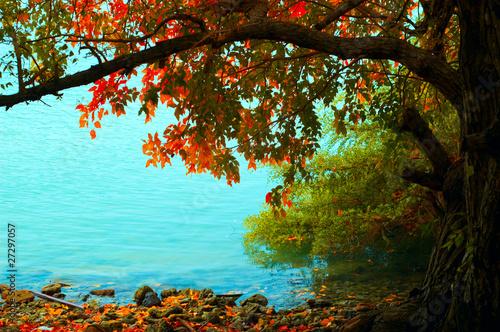 Spoed Foto op Canvas Turkoois Autumn landscape