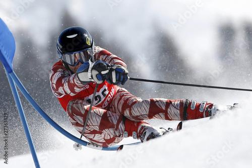 Vászonkép Ski Alpin