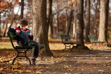 Boy Reading Book Sitting In Park