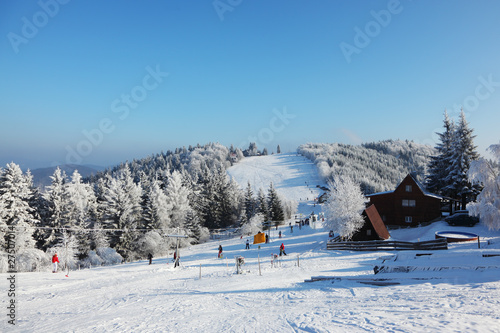 Snow-covered slope, lift cableway and a lot of skiers