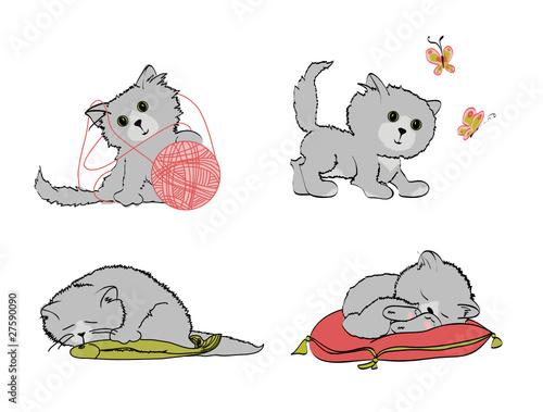 Printed kitchen splashbacks Cats котята
