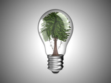 Lightbulb With Green Tree Inside It
