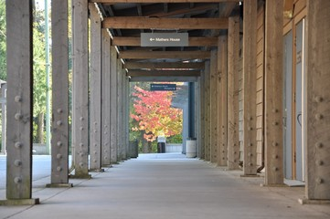 Fototapeta Columned hallway with nature view
