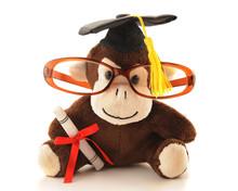 Monkey Grad