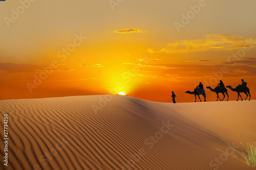 Cadres-photo bureau Desert de sable Sahara