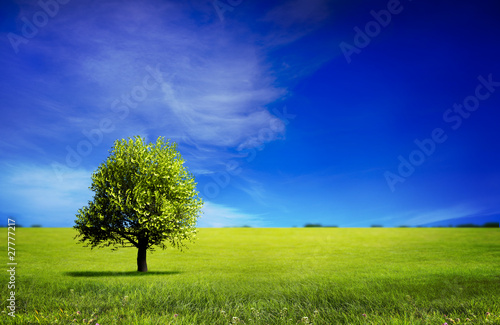 Photo Stands Dark blue landscape