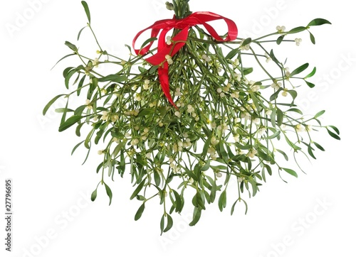 Fotografie, Obraz  mistletoe's bunch with  red ribbon