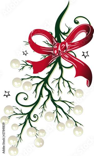 Weihnachten Mistel Mistelzweig Christmas Vector Buy